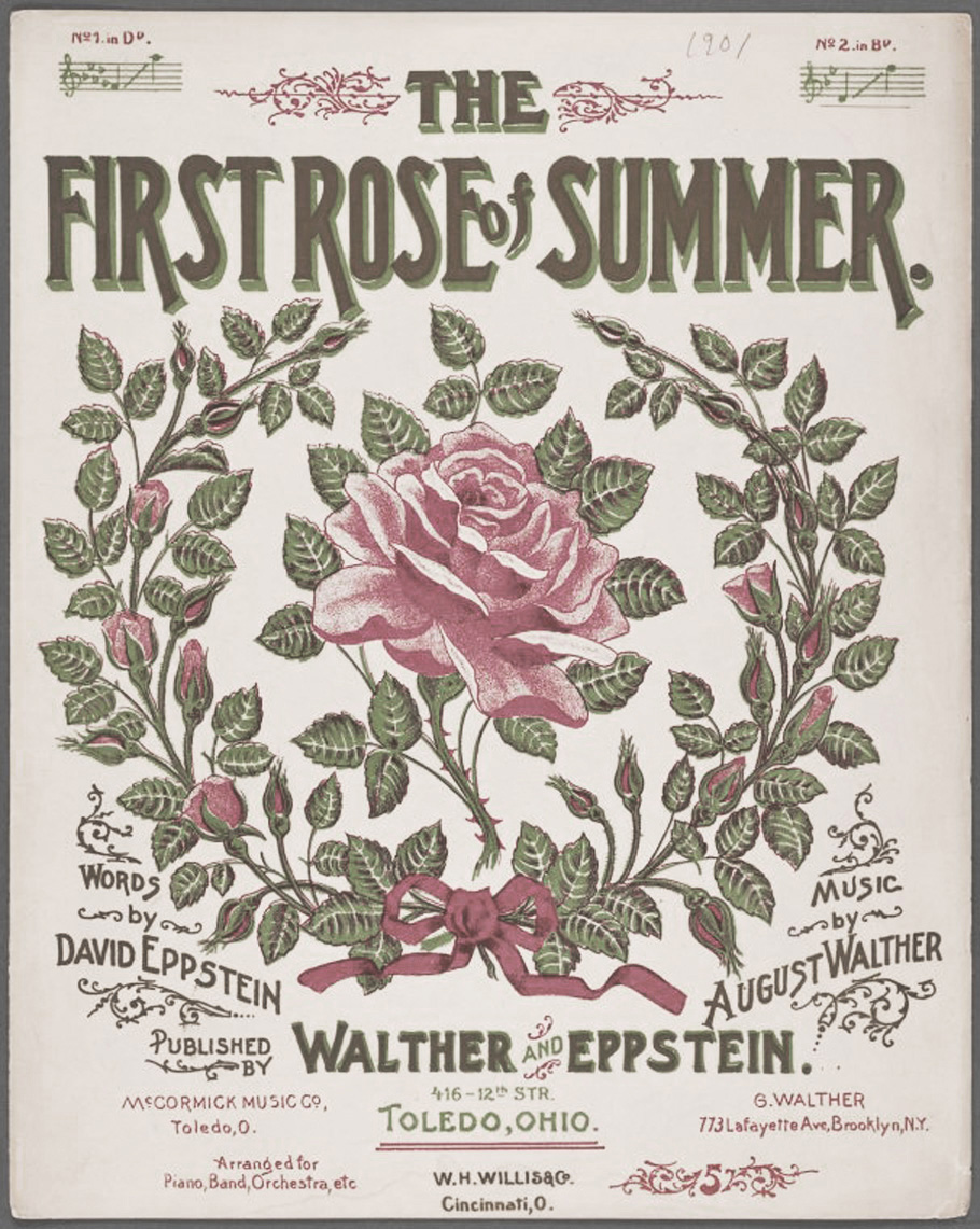 THE-FIRST-ROSE-ok